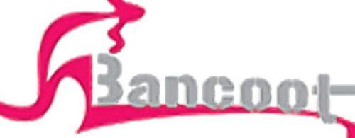 Chậu rửa bát Bancoot